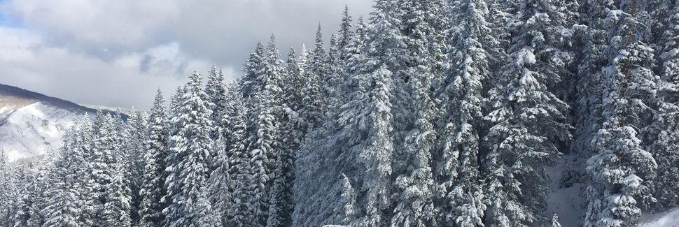 Mountain Valley, Aspen, CO, USA