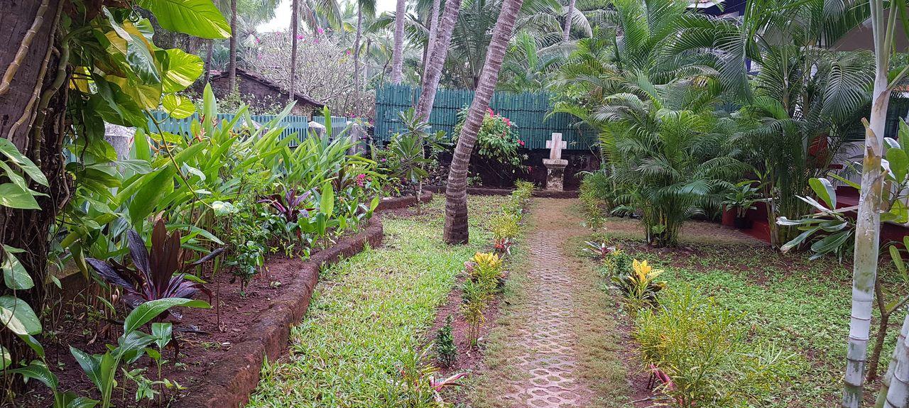 Gauravaddo, Calangute, Goa, India