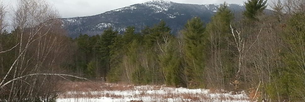 Birch Hill, North Conway, Conway, NH, USA