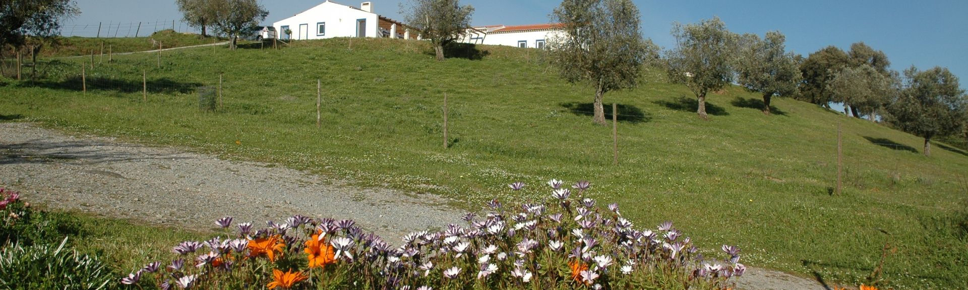 Alcáçovas, Dystrykt Évora, Portugalia