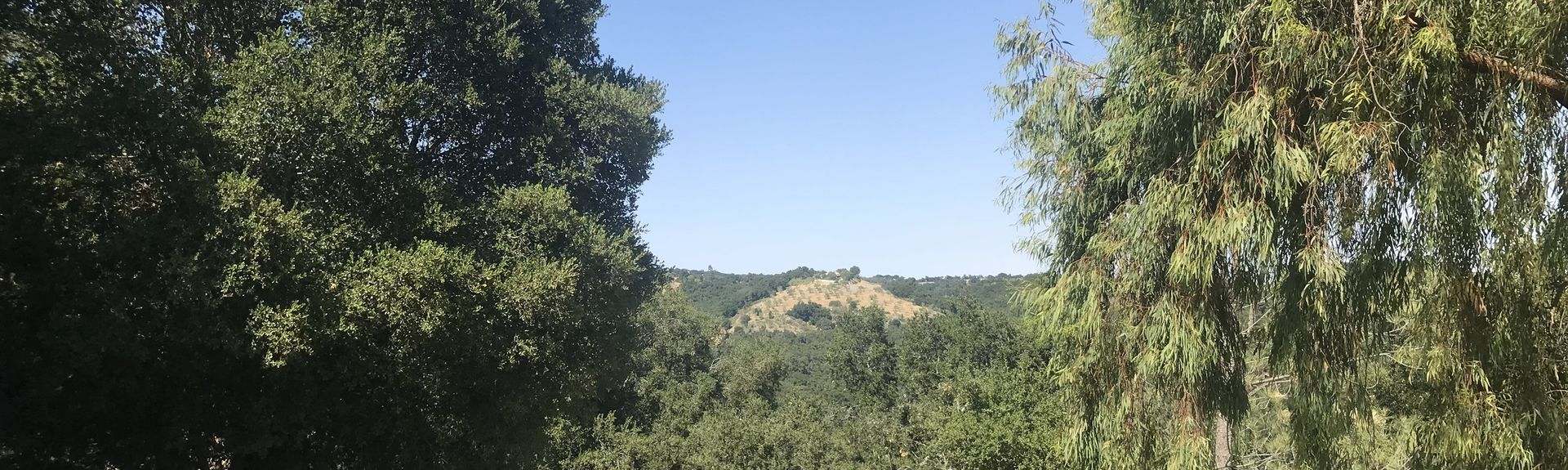 El Chorro Regional Park, San Luis Obispo, Californië, Verenigde Staten