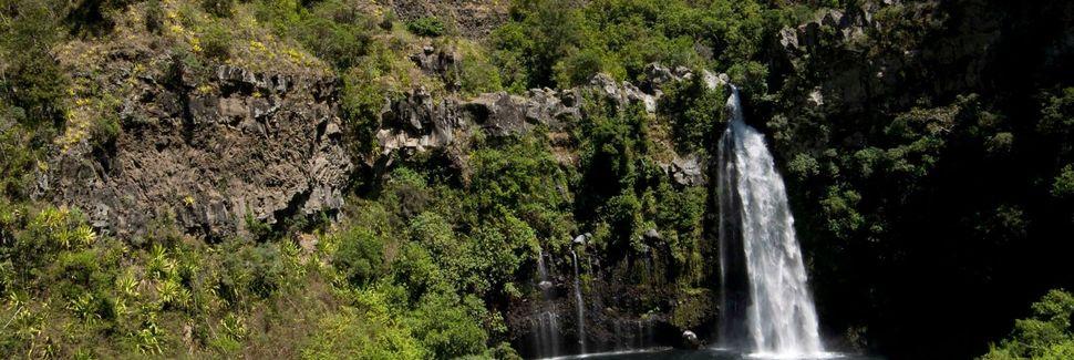 La Plaine-des-Palmistes, Réunion
