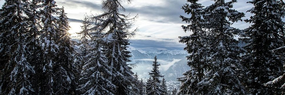 Siviez, Nendaz, Valais, Schweiz