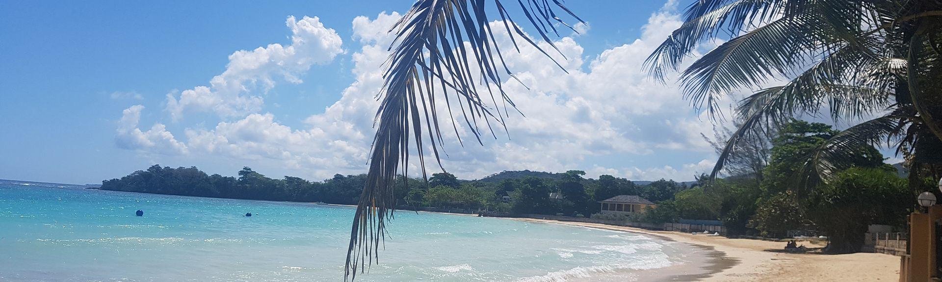 Mammee Bay Estates, Comté de Middlesex, Jamaïque