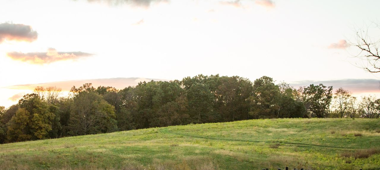 Huntly, Virginia, United States