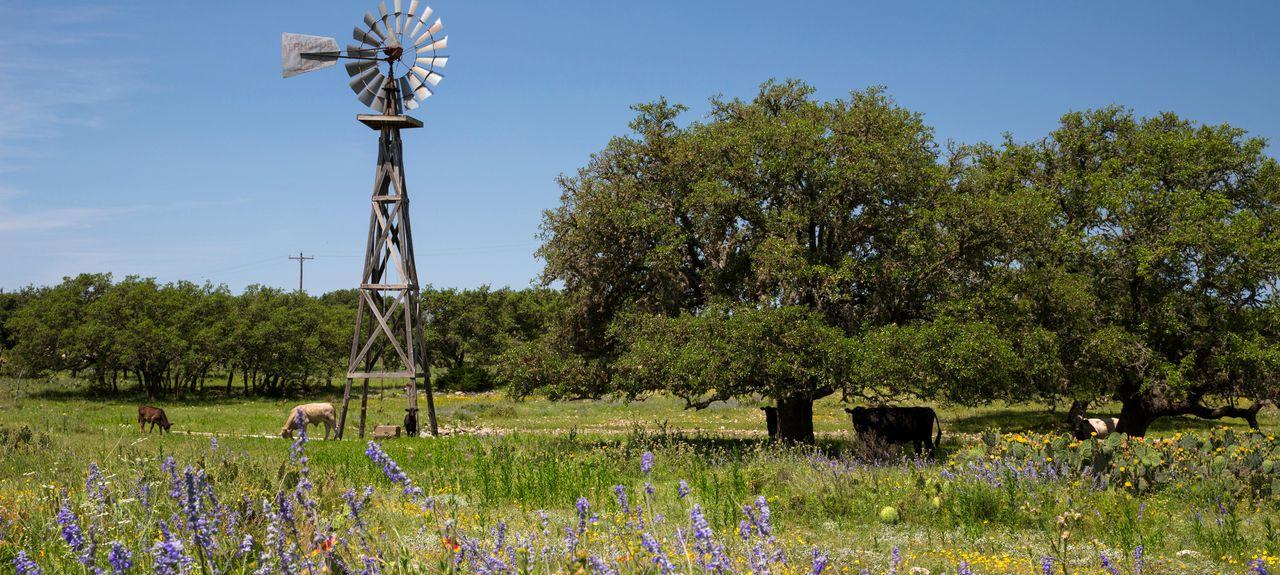 Kerrville, TX, USA