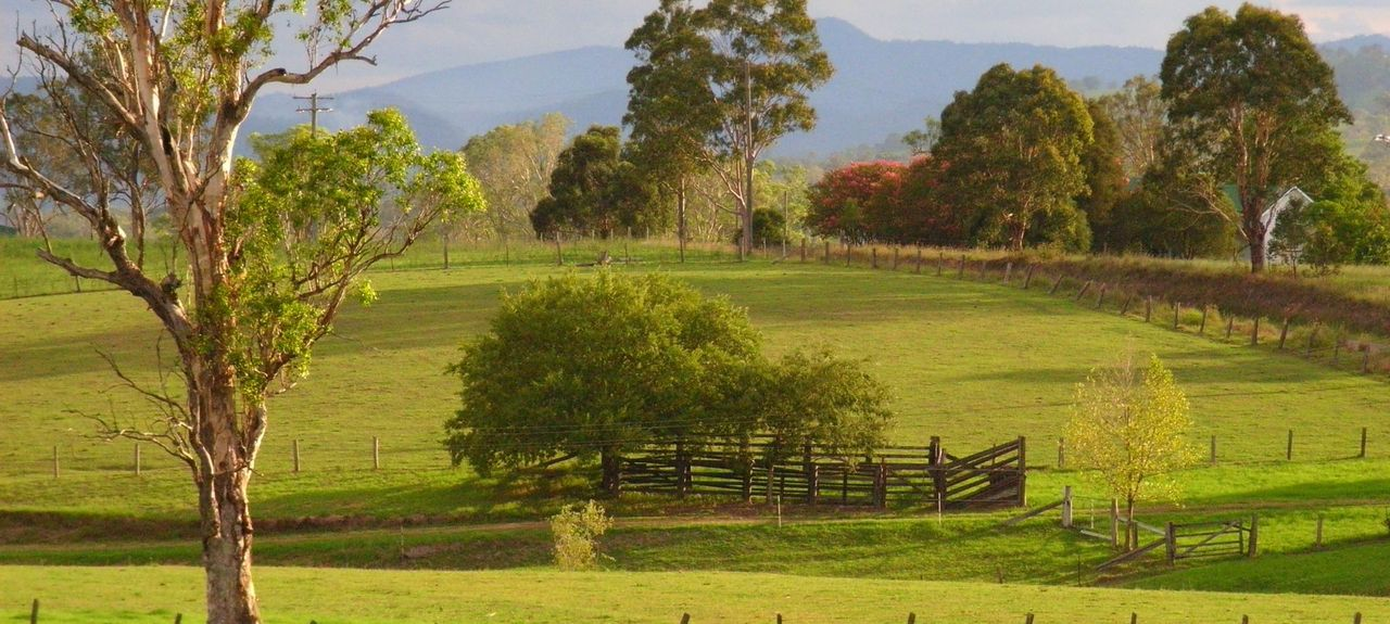 Bowman Farm, NSW, Australia