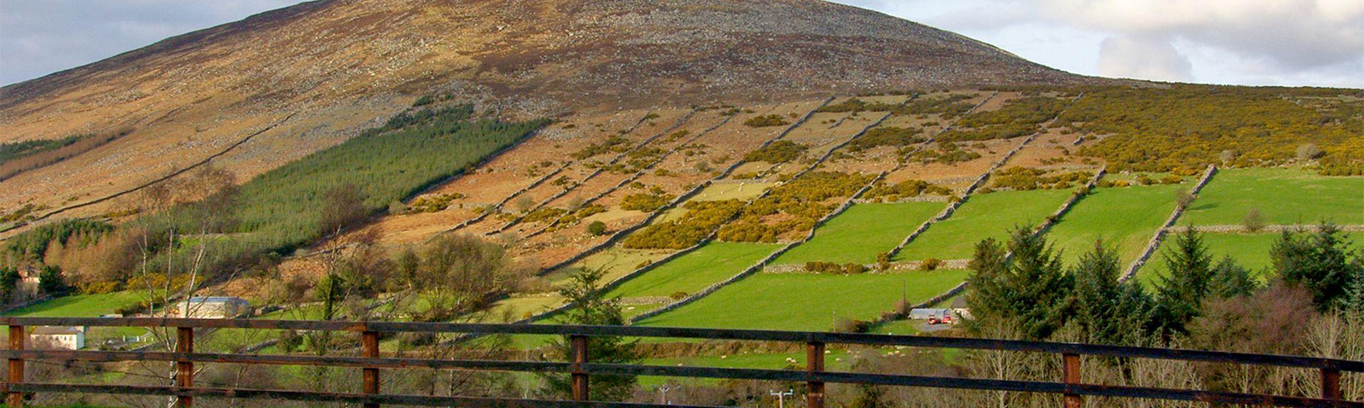 Carrigleade Golf Course, St. Mullins, Carlow (comté), Irlande
