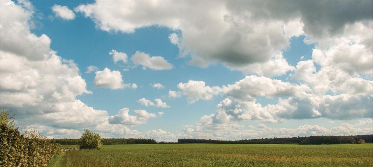 Nossentiner Schwinzer Heide - Landkreis Müritz, Germany