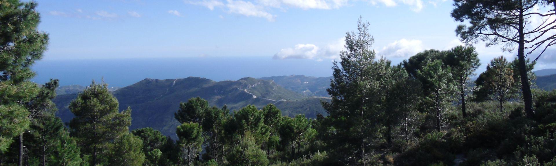 Maro, Andalusien, Spanien