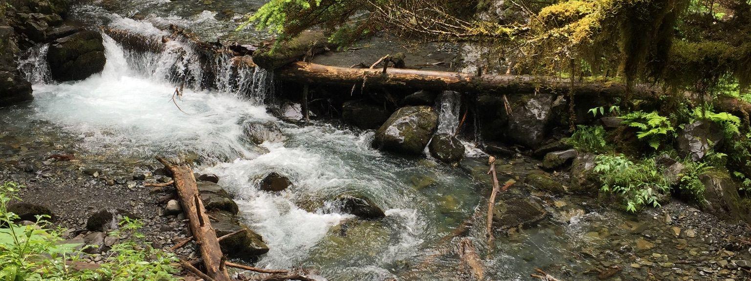 Taku-Campbell, Anchorage, Alaska, Verenigde Staten