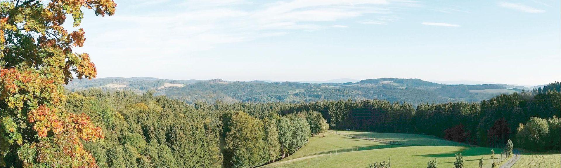 Ochsenkopf, Bischofsgrüner Forst, Germany