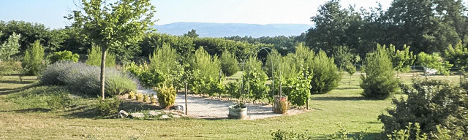 Lacoste, Provence-Alpes-Côte d'Azur, Frankreich
