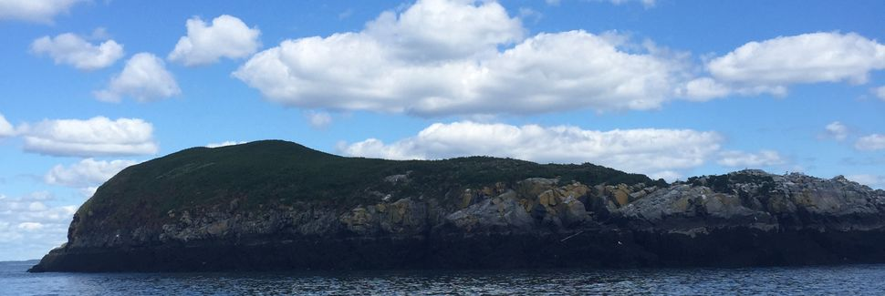 St George, New Brunswick, CA