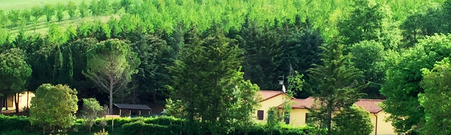 Oratorio dei Pellegrini, Assisi, Ombrie, Italie