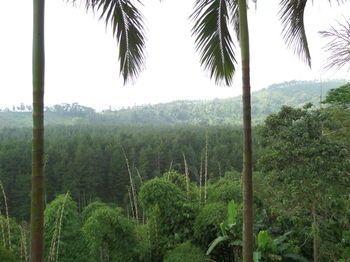 Jawa Timur, Indonesien