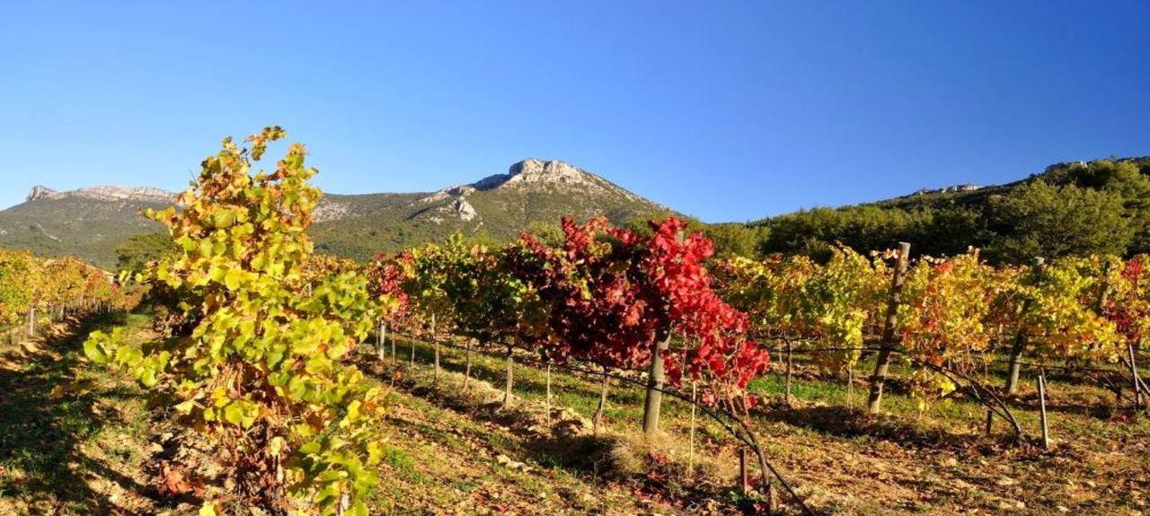 Peypin, Provence-Alpes-Côte d'Azur, France