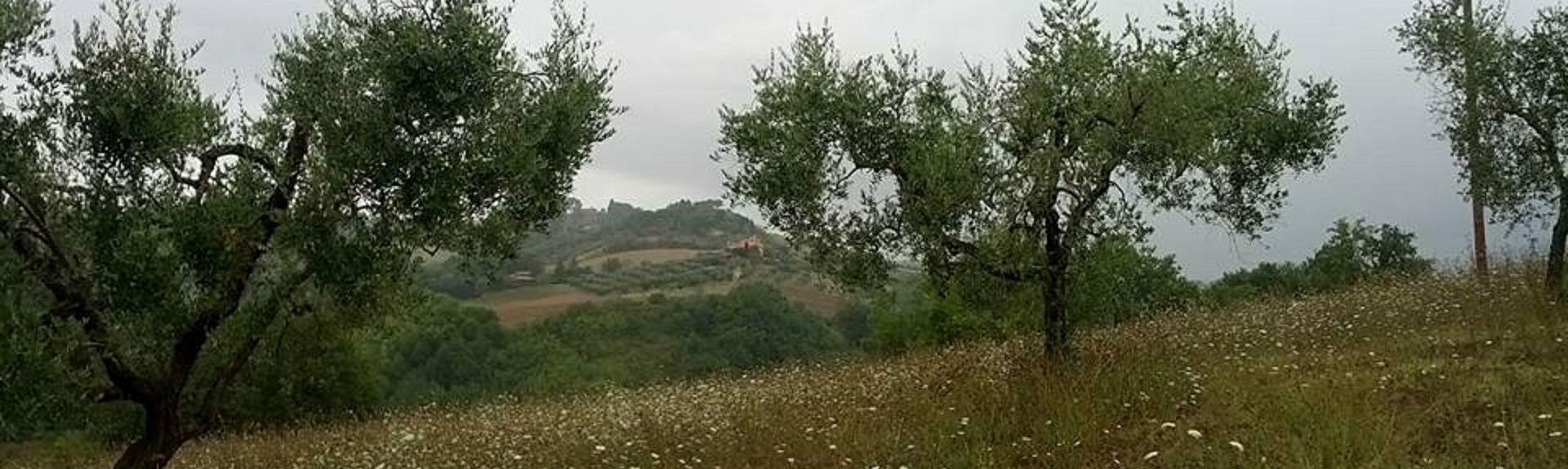 Mompeo, Lazio, Italia