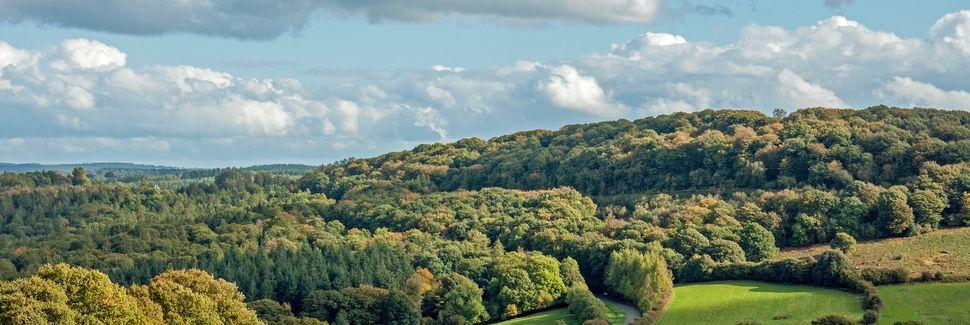Forest of Dean, Engeland, Verenigd Koninkrijk