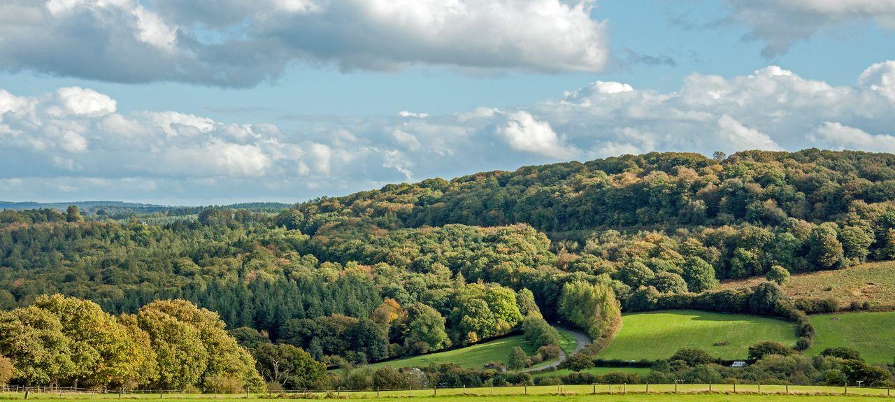 Forest of Dean, England, Großbritannien