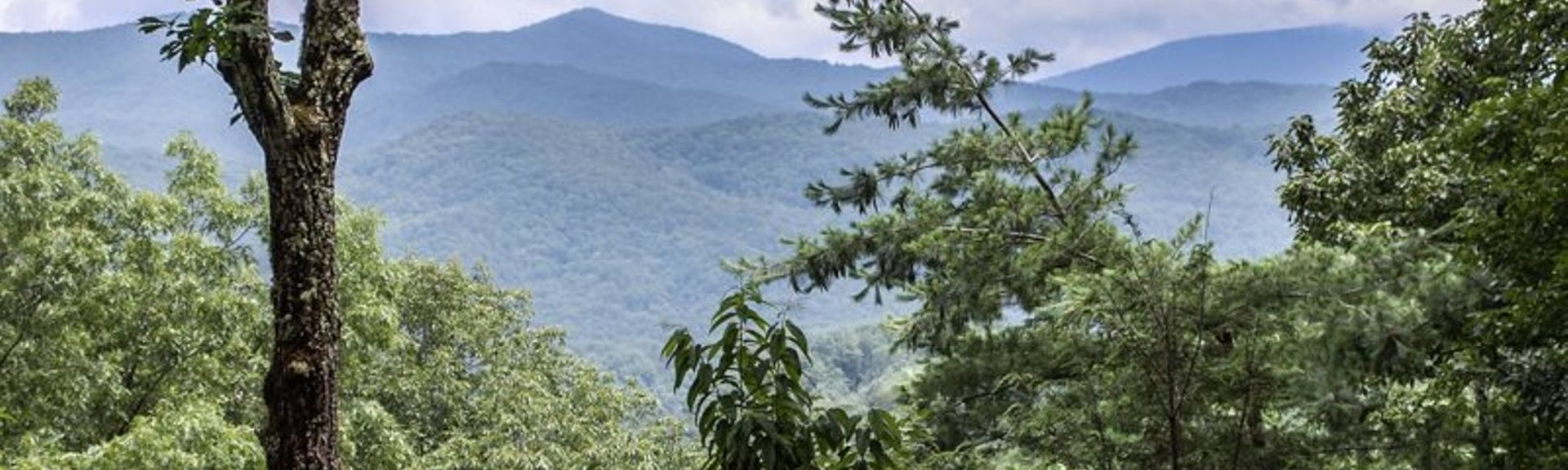 Chattahoochee National Forest, US holiday lettings for 2019