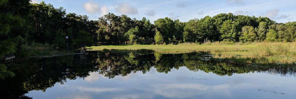 Lake Panasoffkee, FL, USA
