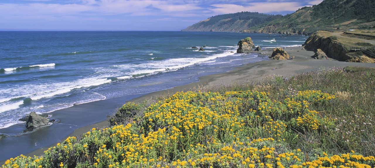 Mendocino County, CA, USA