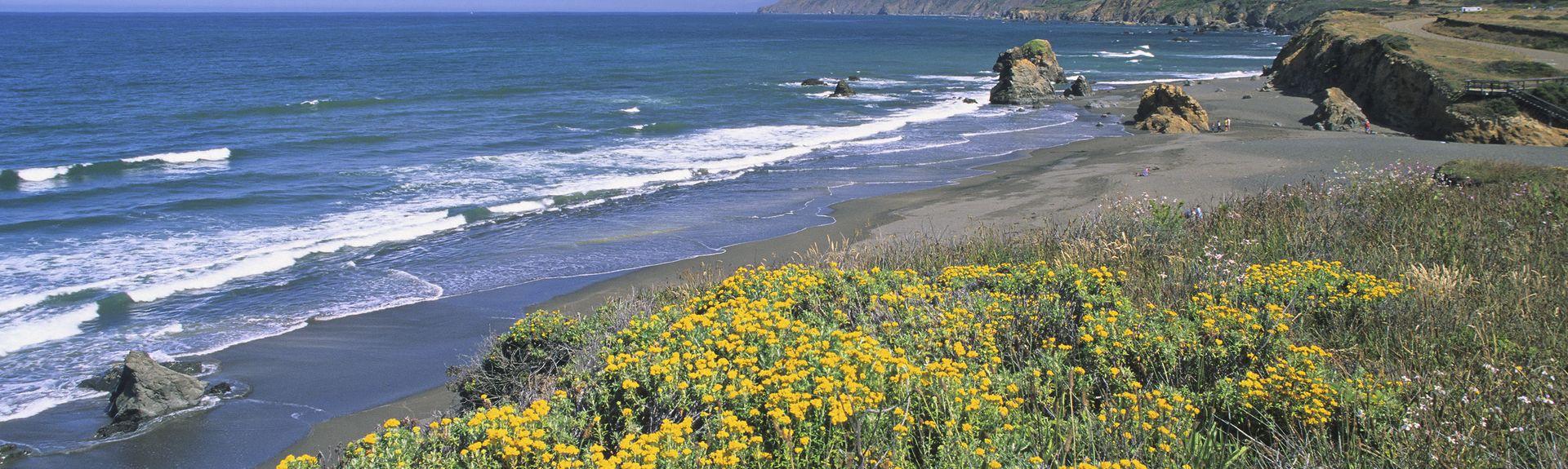Mendocino County, Califórnia, Estados Unidos