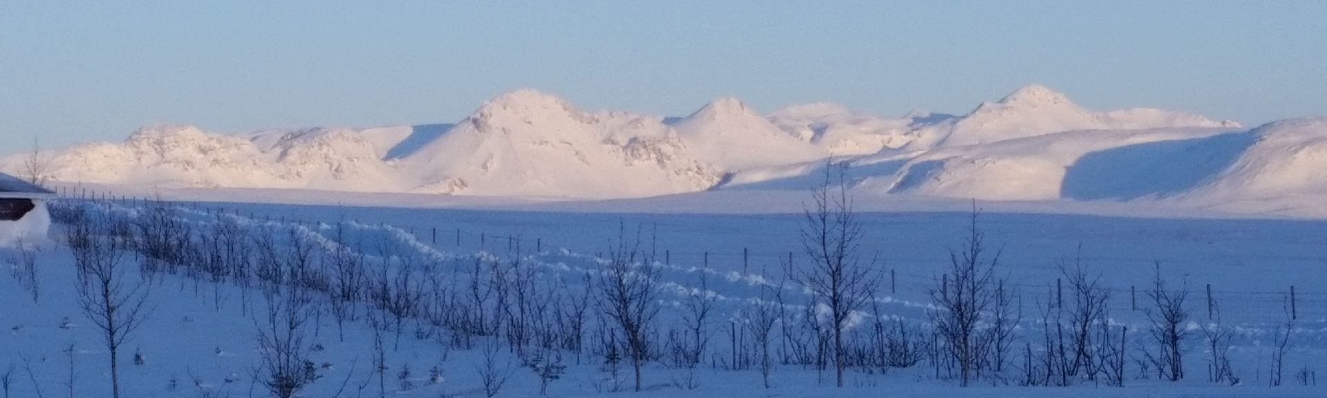 Strokkur, Bláskógabyggd, Southern Region, Iceland