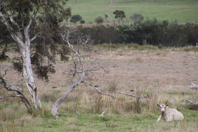Torbay, West-Australië, Australië