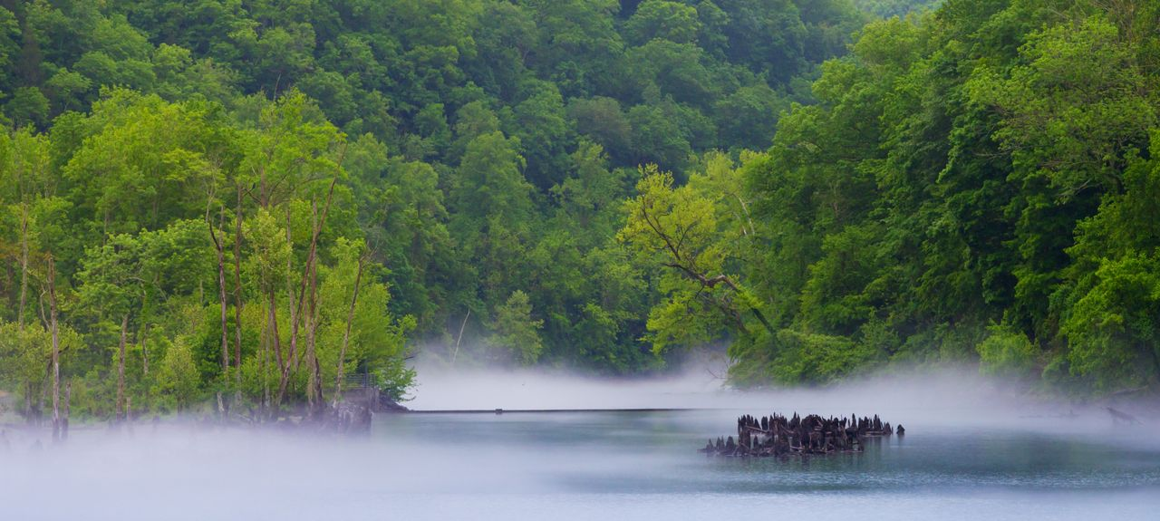 Norris Lake, TN, USA
