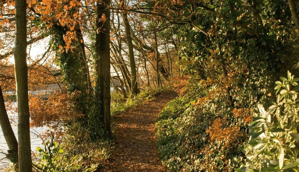 Newton-le-Willows, Merseyside, UK
