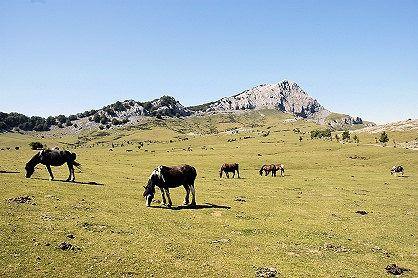 Durango, Pays basque, Espagne