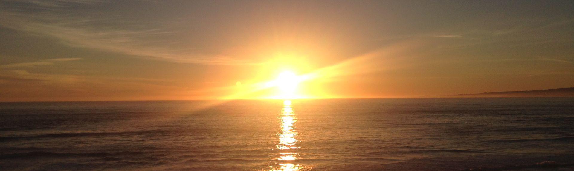 New Brighton State Beach, Aptos, Californië, Verenigde Staten