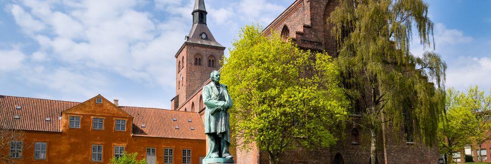 Odense, Syddanmark, Denemarken