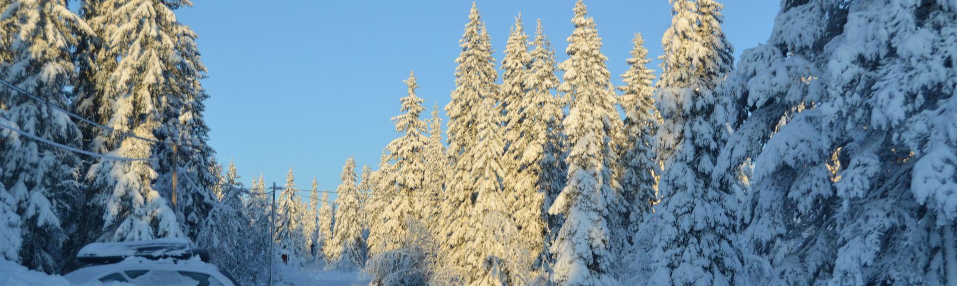 Älvdalen, Dalarnas län, Sverige