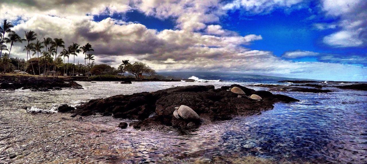 Honoli'i Beach Park, Hilo, HI, USA