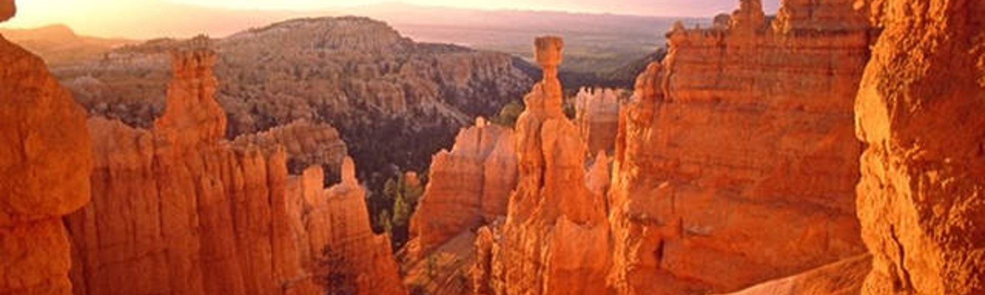 Bryce Canyon, UT, USA