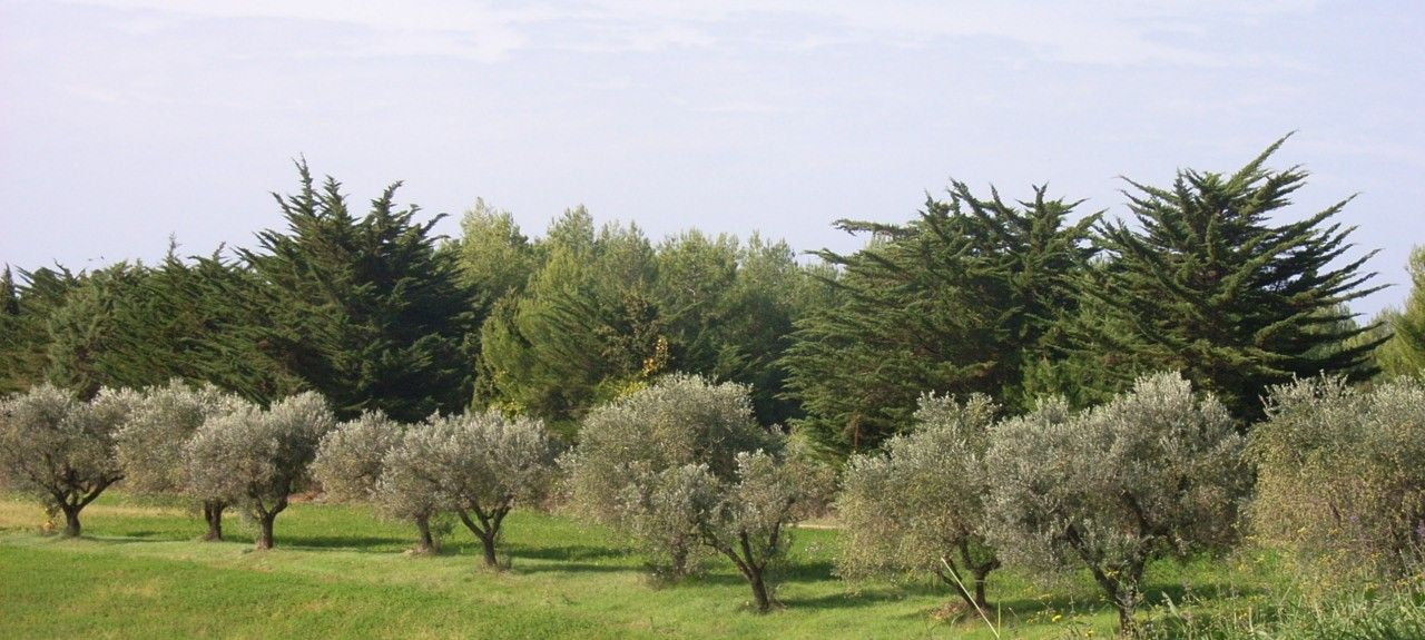 Quercianella, Toscana, Italia