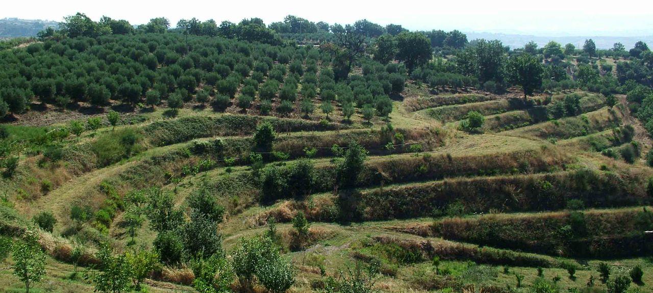 Morano Calabro, Calabre, Italie