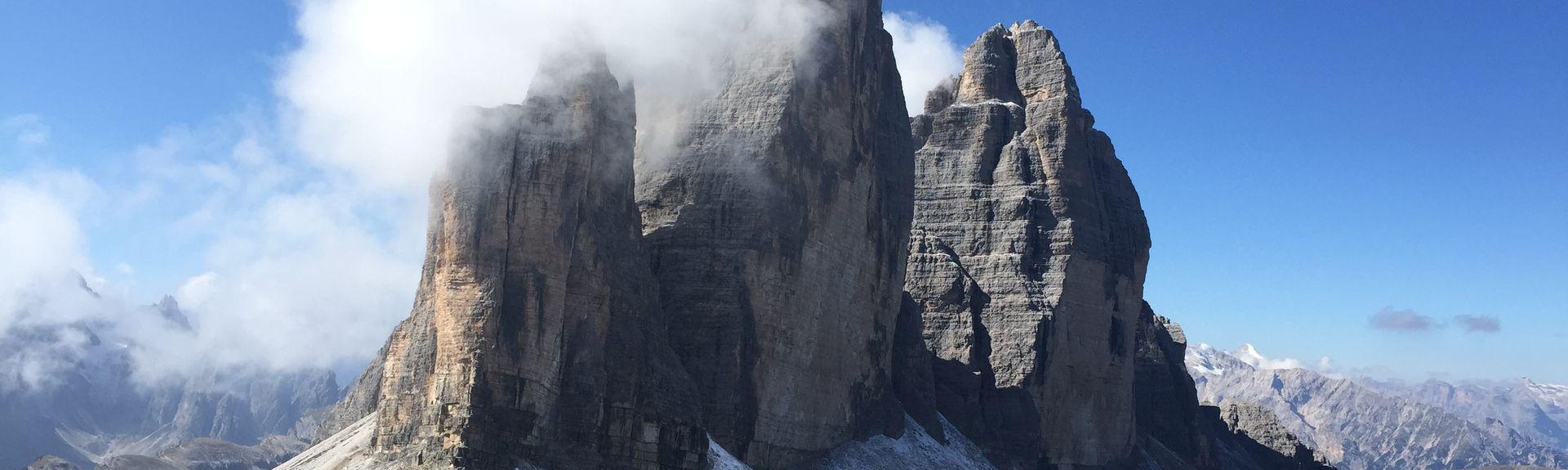 Falconeria Dolomiti, Cortina d'Ampezzo, Veneto, Italia