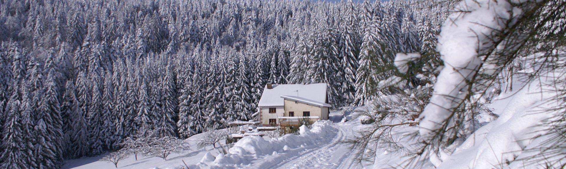 Le Tholy, Vosges (department), France
