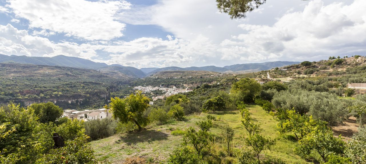 Villamena, Andalucía, España