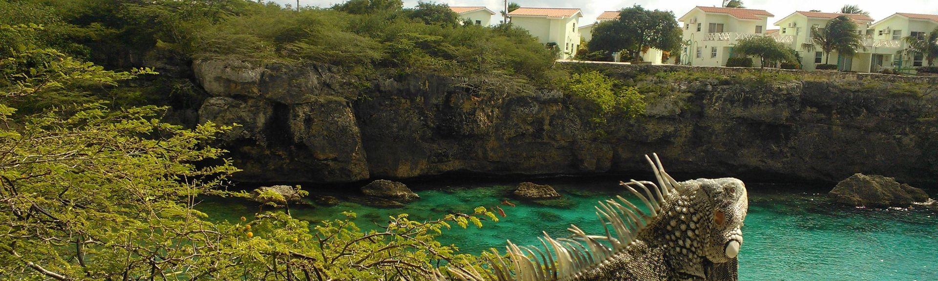 Lagun, Curaçao