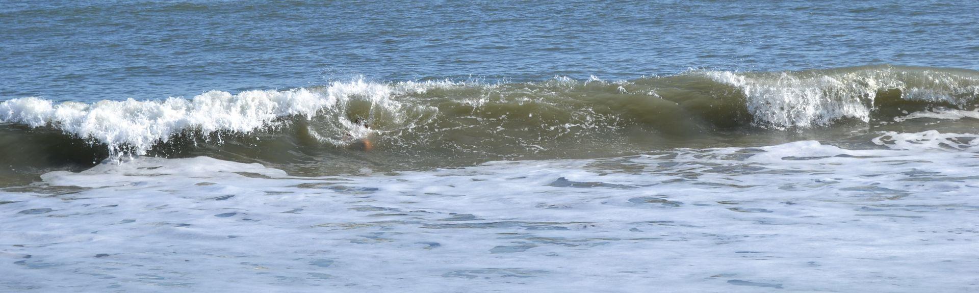 Tidewater (Isle of Palms, Carolina do Sul, Estados Unidos)