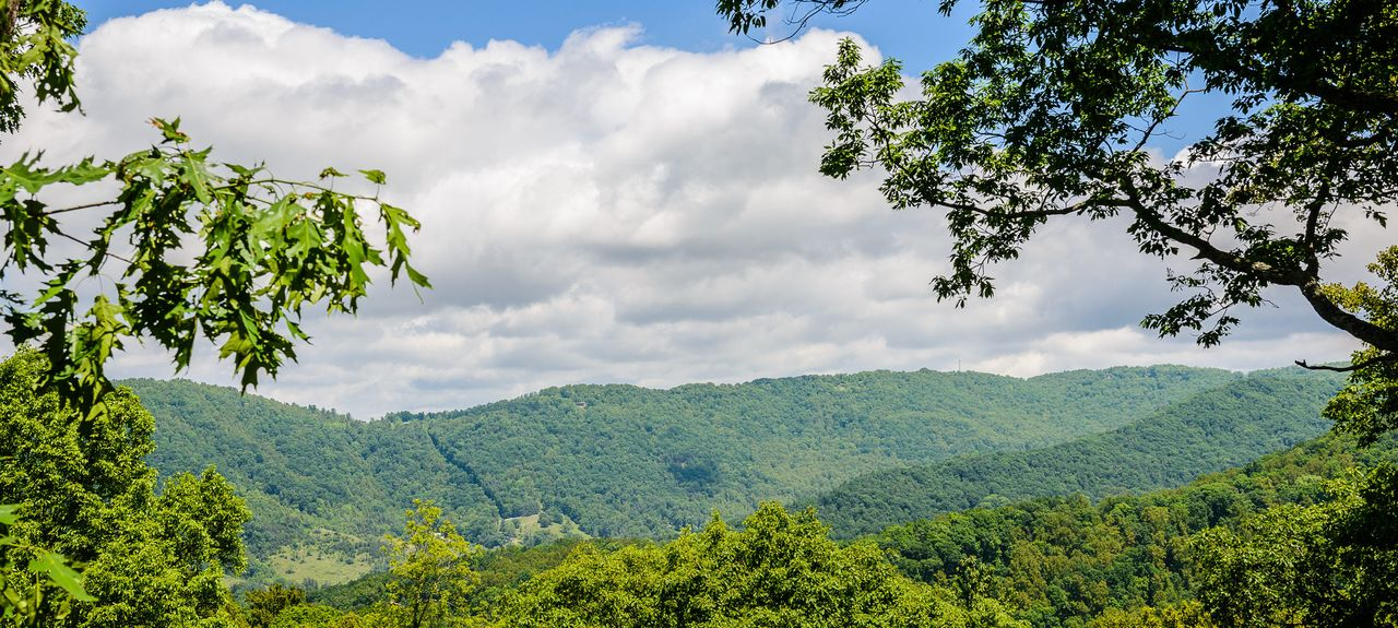 Haw Creek, Asheville, North Carolina, United States