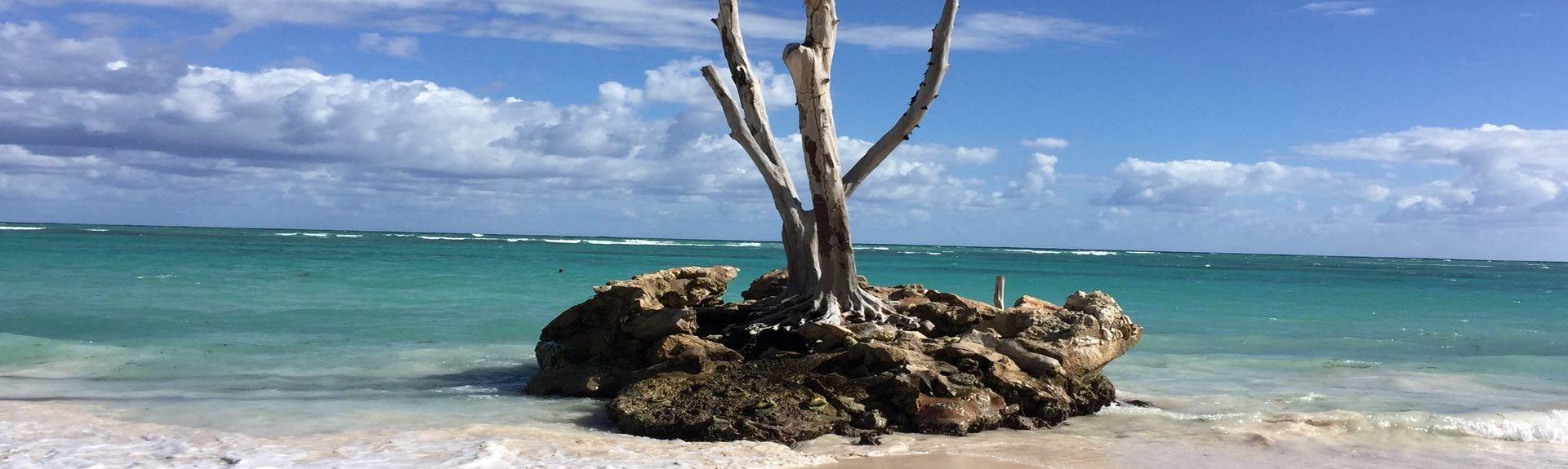 El Cortecito, Punta Cana, La Altagracia, República Dominicana