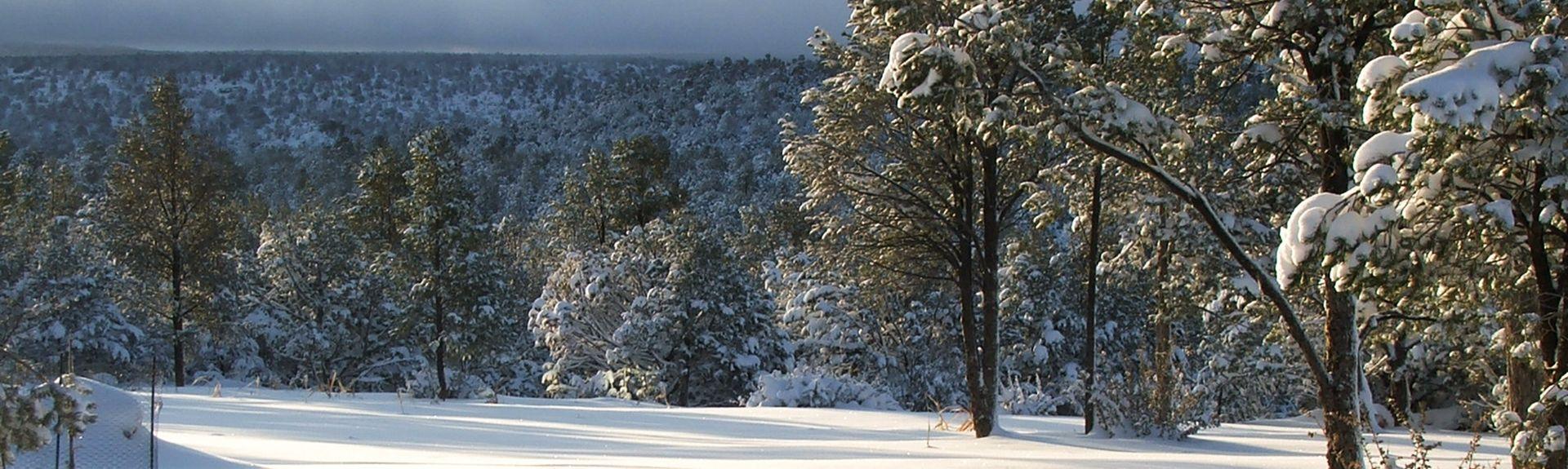 Seligman, Arizona, United States of America