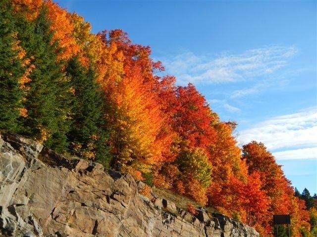 Tea Lake Dam Picnic Area, Nipissing District, Ontario, Canada