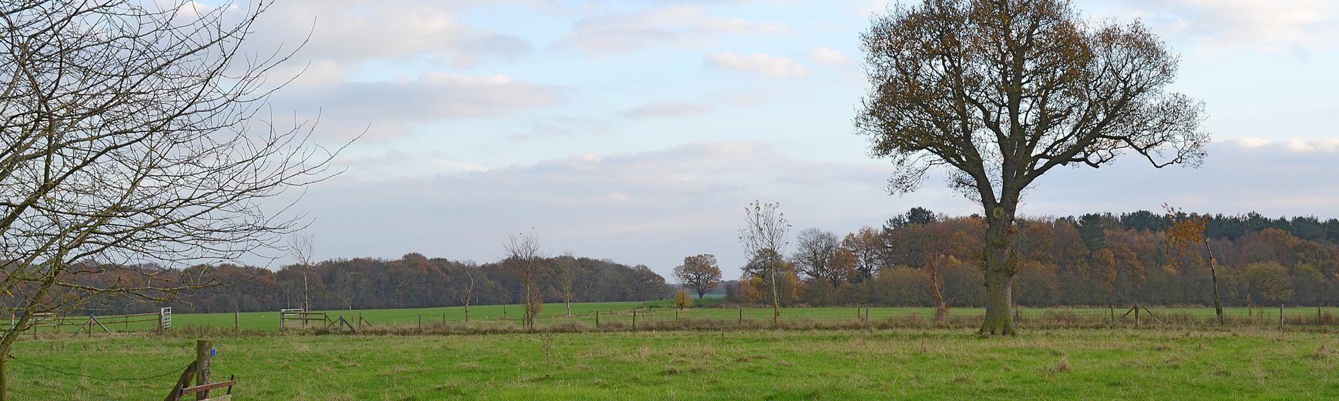 Swadlincote, England, Großbritannien